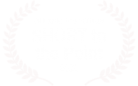 OFFICIAL-SELECTION---SHORT-to-the-Point---2020